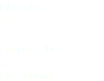 Fiberglass $ 450.00 Carbon Fiber $ 500.00 (Plus Shipping)